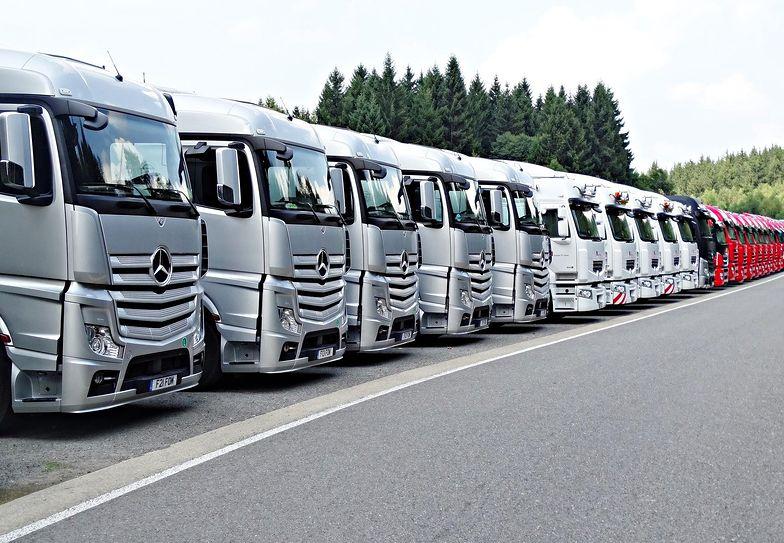 Firma transportowa musi spełniać szereg wymogów prawnych