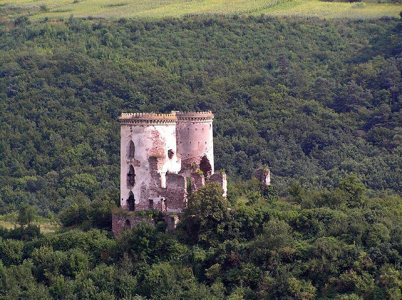 Polacy za 40 mln zł chcą ratować zamek na Ukrainie