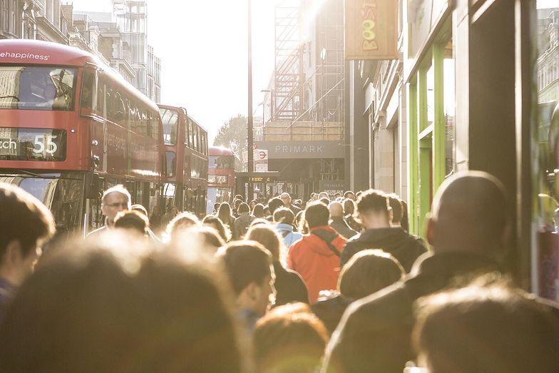 Emigranci z Polski mogli się czuć coraz bogatsi w Wielkiej Brytanii, aż do początku ubiegłego tygodnia