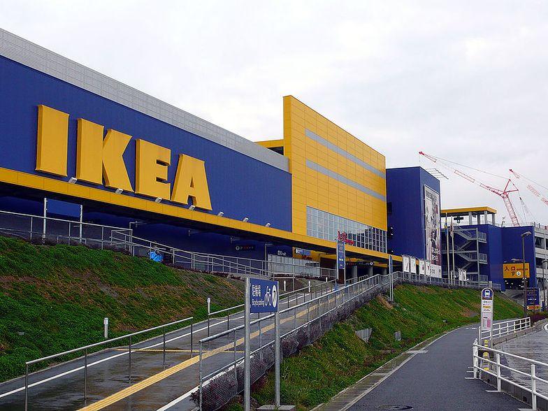 IKEA zmniejsza zatrudnienie. Zaczyna inwestować w e-commerce