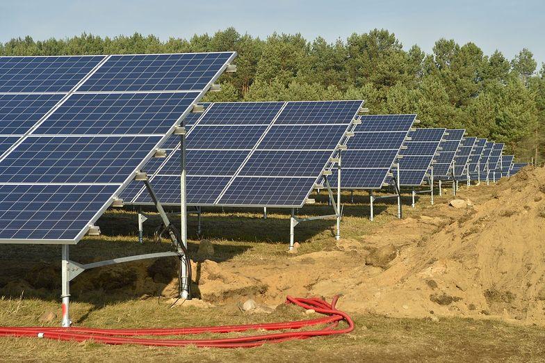 Polski Solar Holding szuka inwestorów. Za pozyskane pieniądze chcą produkować tańszy prąd