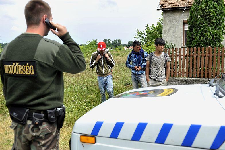 Funkcjonariusz węgierskiej straży granicznej z nielegalnymi imigrantami z Afganistanu (25.06.2015)