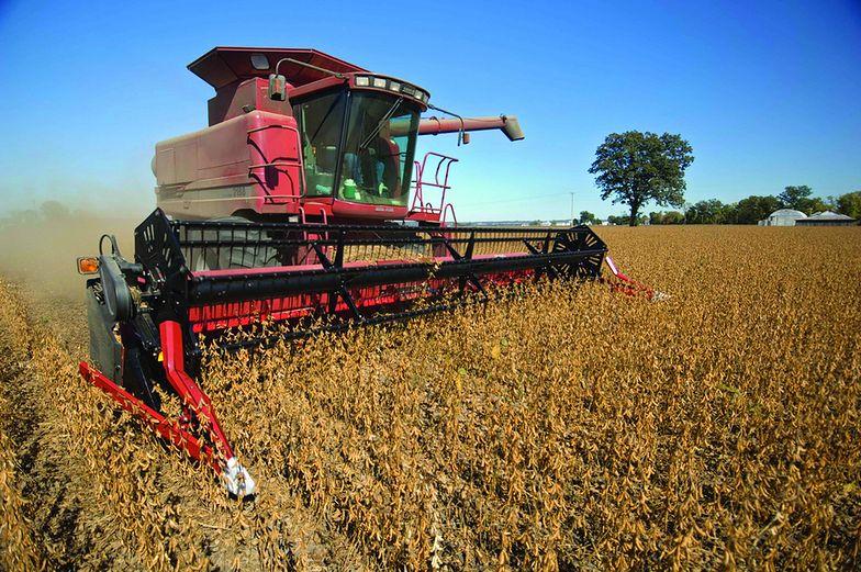 Ceny zbóż mało atrakcyjne. Rolnicy narzekają na dostawy z Ukrainy
