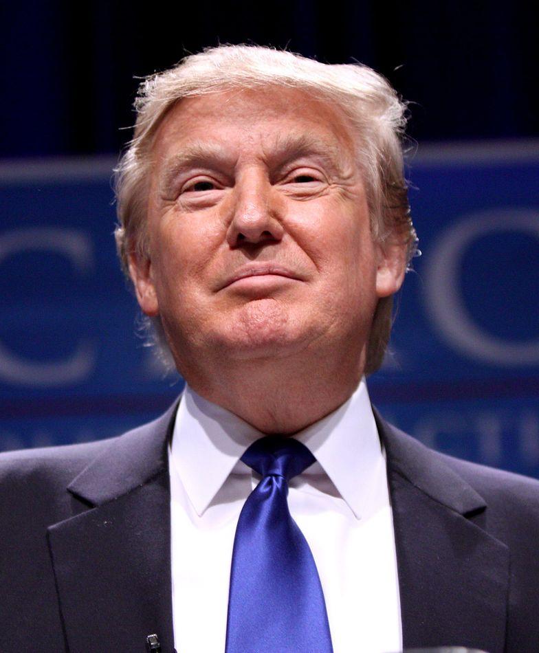 Wybory prezydenckie w USA. Donald Trump chce zdobyć Biały Dom