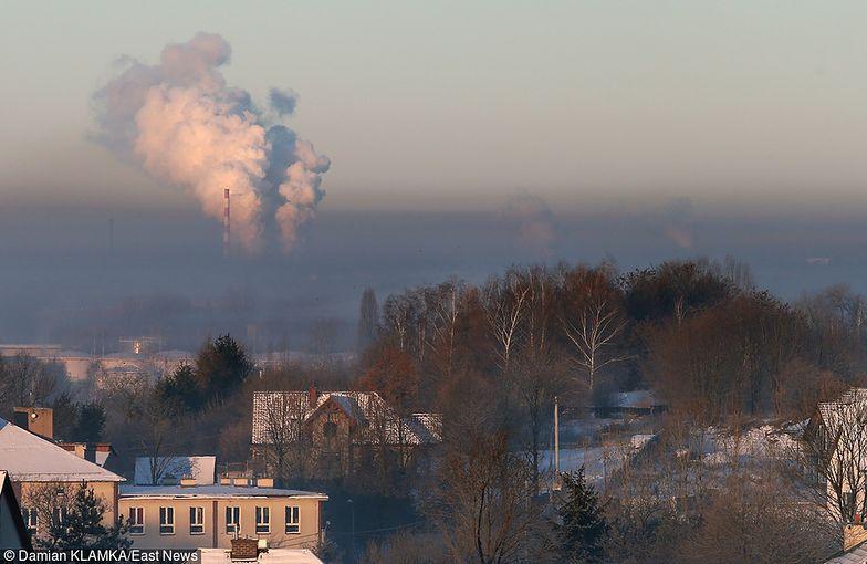 Rządowy plan walki ze smogiem. Polski Alarm Smogowy: rząd mógłby upiec dwie pieczenie na jednym ogniu
