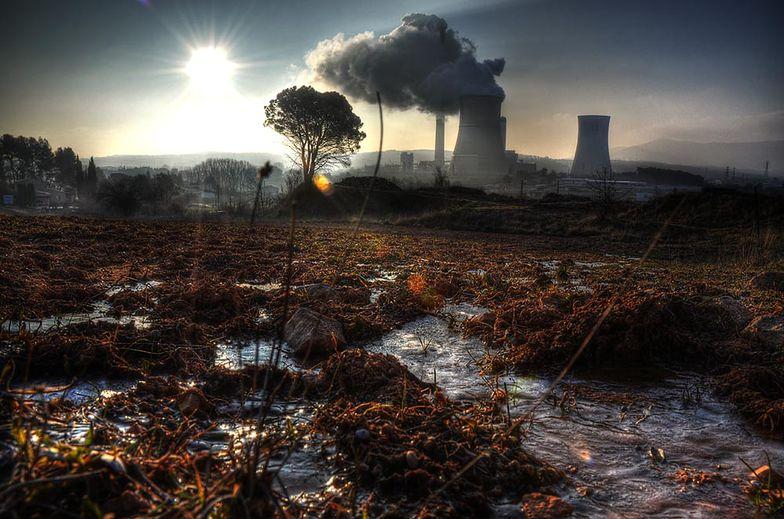 Zmiany klimatyczne na świecie. Brazylia deklaruje nowe cele w redukcji emisji gazów cieplarnianych