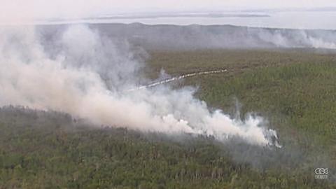 Potężne pożary zmusiły turystów do ewakuacji z popularnej wyspy