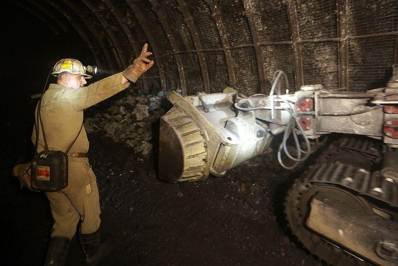 Prairie Mining powstrzymuje entuzjazm inwestorów, ale akcje nie przestają rosnąć