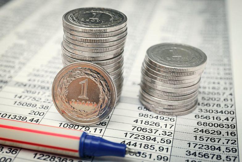 Wyzwania dla polskiej gospodarki. Organizacje ekonomiczne oceniają nasz kraj