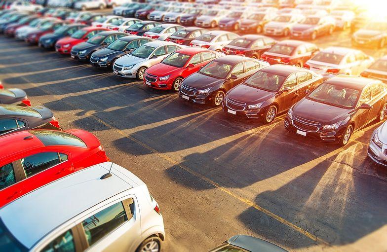Większość klientów wypożyczalni stanowią osoby, które poszukują ekonomicznych aut miejskich