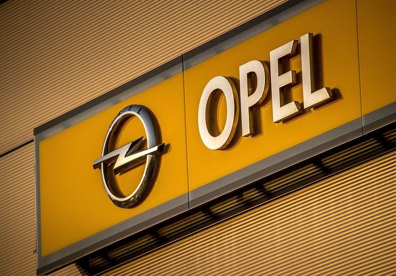 Los Opla już przesądzony. W poniedziałek oficjalna informacja o sprzedaży
