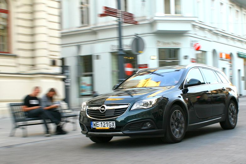 Zieloni w Niemczech chcą zakazać samochodów z silnikami spalinowymi