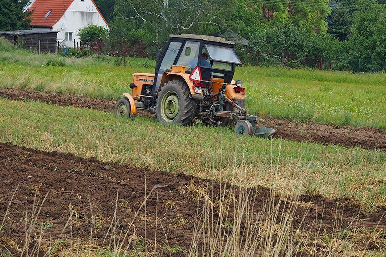 Będą większe dotacje państwa do ubezpieczeń rolniczych