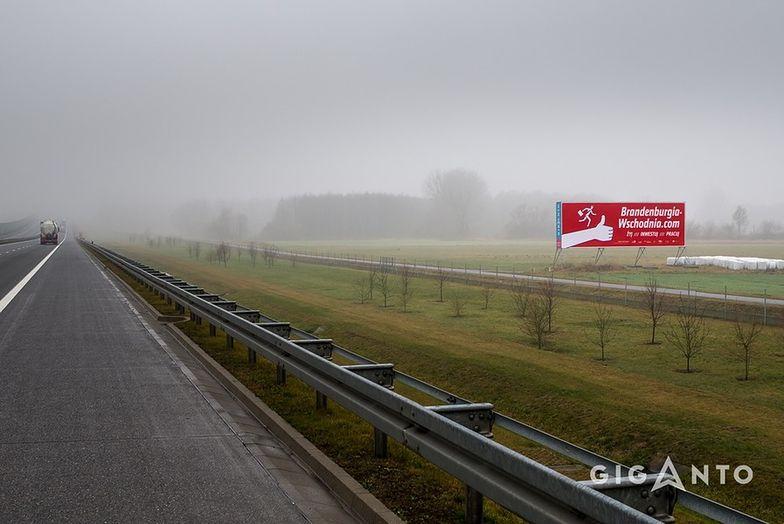Gigantyczny blillboard zachęca do inwestowania w Brandenburgii. Ma wymiary 18 na 6 metra