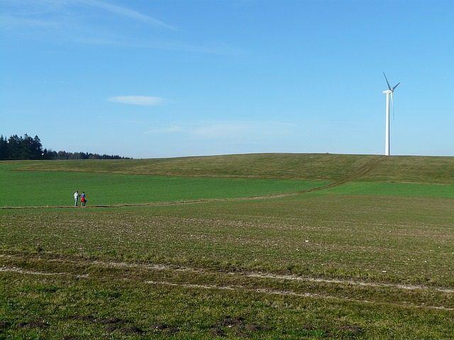 Rolnictwo ekologiczne a konwencjonalne i integrowane