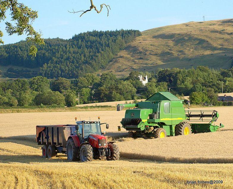 Dopłaty dla rolników będą wyższe? Tego chce PiS
