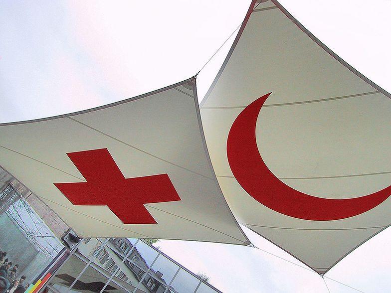 Były prezes Greckiego Czerwonego Krzyża oskarżony o pranie pieniędzy