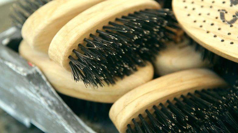 Pomysł na biznes: odrobina rękodzieła i naturalne włosie dzika