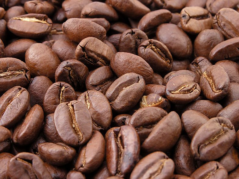 Niewolnicy pracują na plantacjach w Brazylii. Tę kawę pije większość z nas