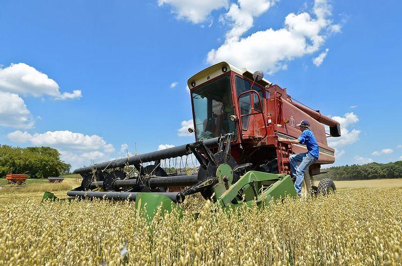 Polscy rolnicy konkurencją dla węgierskich?