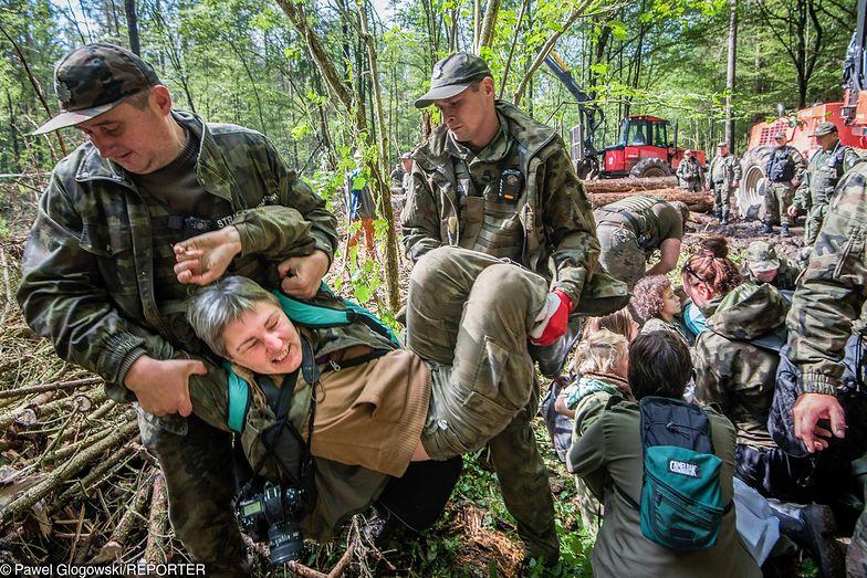 Trybunał bezlitosny w sprawie Białowieży. Polskę mogą spotkać kary