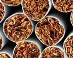 Udaremnili przemyt papierosów za 2,2 mln euro