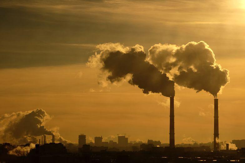 Alarm smogowy: Polacy powinni być lepiej informowani o zanieczyszczeniu powietrza