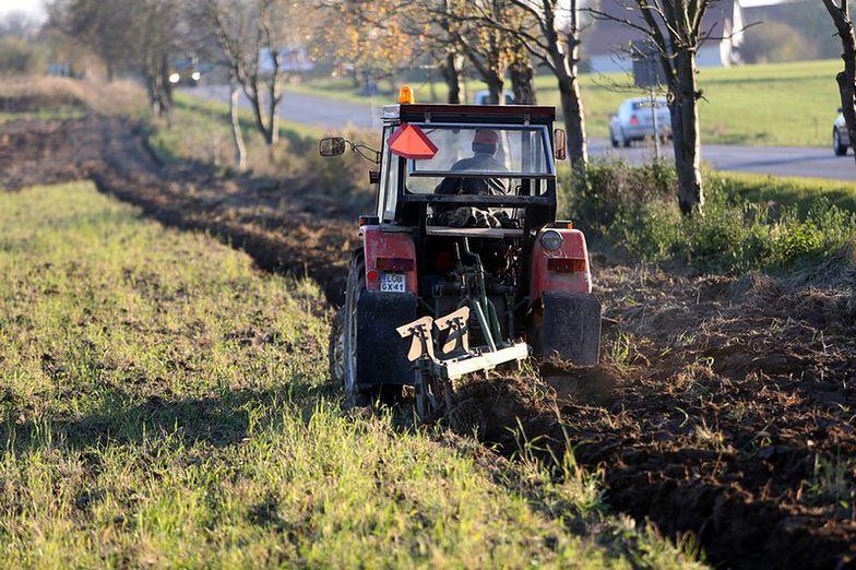 Dopłaty bezpośrednie. Rolnicy z Polski dostają jedne z najniższych stawek w UE