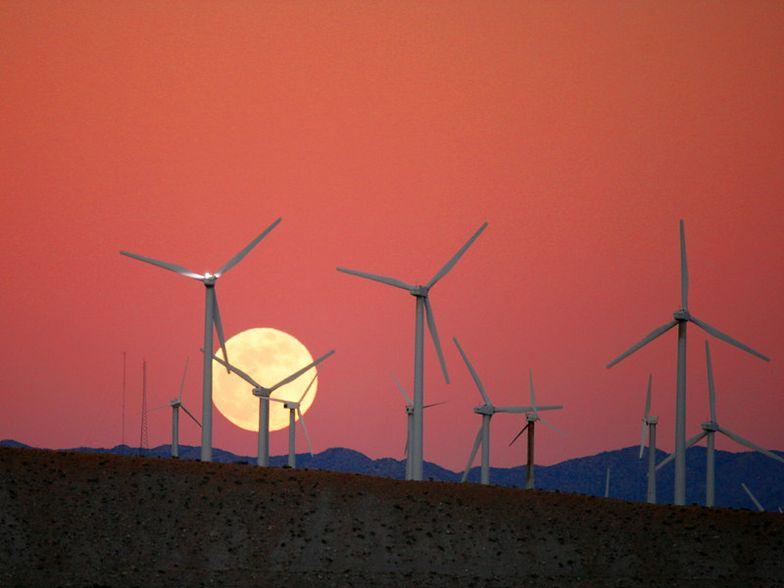 Za piętnaście lat najwięcej energii dostarczy wiatr