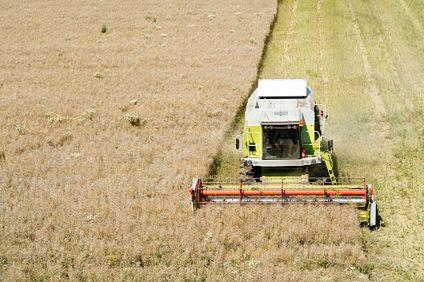 Dopłaty rolne będą w tym roku niższe