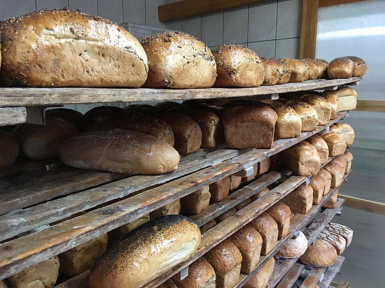 Chleb drożeje, bo piekarniom rosną koszty. Największe zagrożenie: odpływ Ukraińców