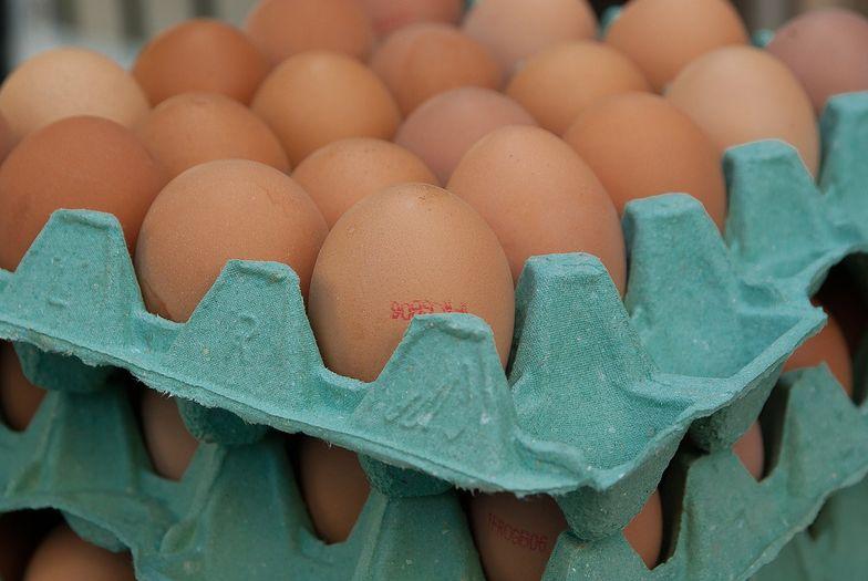 Teraz nie ma precyzyjnego mechanizmu informacji o cenach jaj. To ma się zmienić