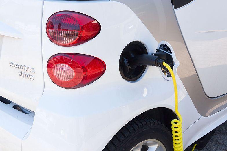 Elektromobilność. W produkcji baterii wyrastamy na potęgę europejską