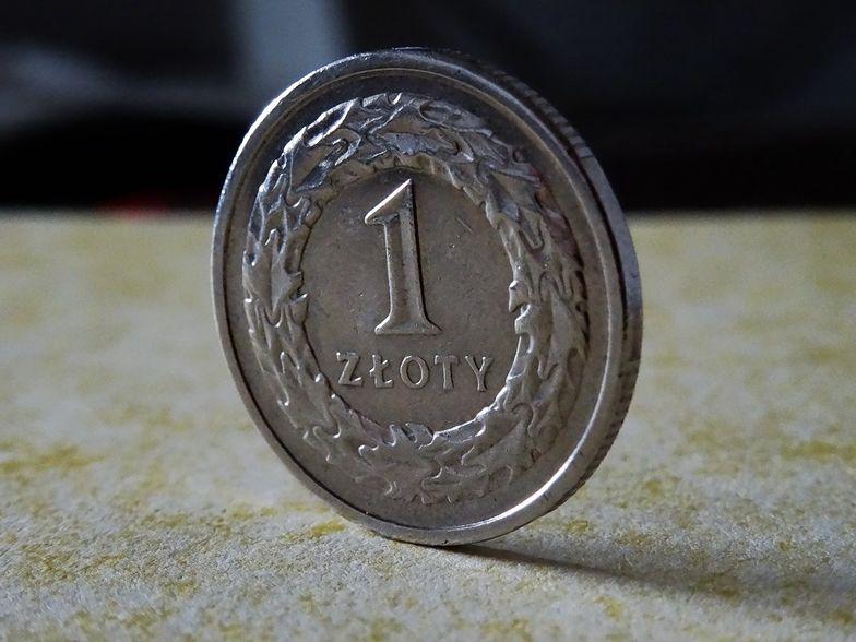 FFiL Śnieżka rekomenduje 2,6 zł dywidendy na akcję z zysku za 2019 r.