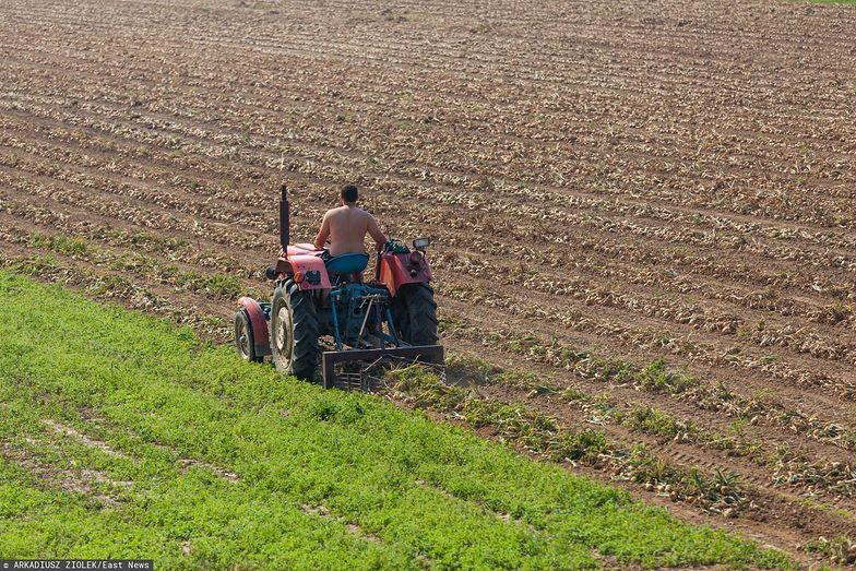 Nieuczciwe firmy pożyczkowe biorą się za rolników. Obiecują wiele, zabierają jeszcze więcej