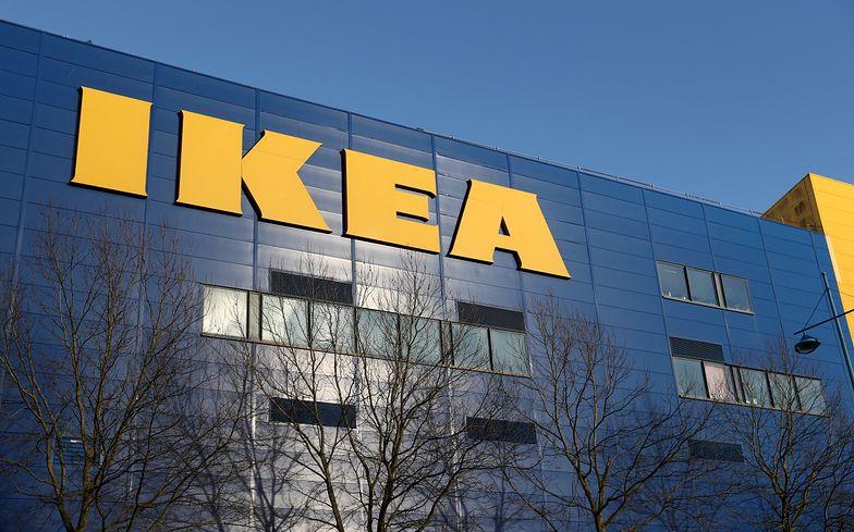 Brytyjskie sklepy IKEA świecą pustkami. Problem z dostawami