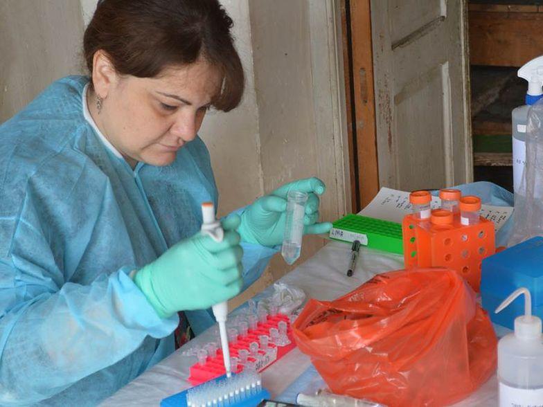 Ryvu: Najważniejszy element strategii to badania klin. SEL120 w guzach litych