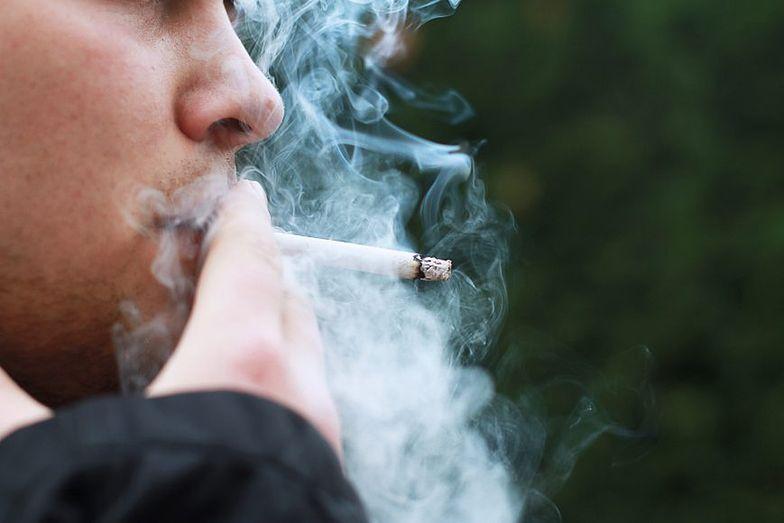 Na Wiejskiej ułatwienia dla palaczy. Podatnicy zapłacą za to 380 tys. zł