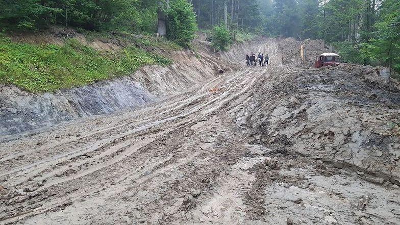 Wycinka w Bieszczadach. Miał być rezerwat przyrody, a powstają błotniste autostrady dla tirów z drewnem