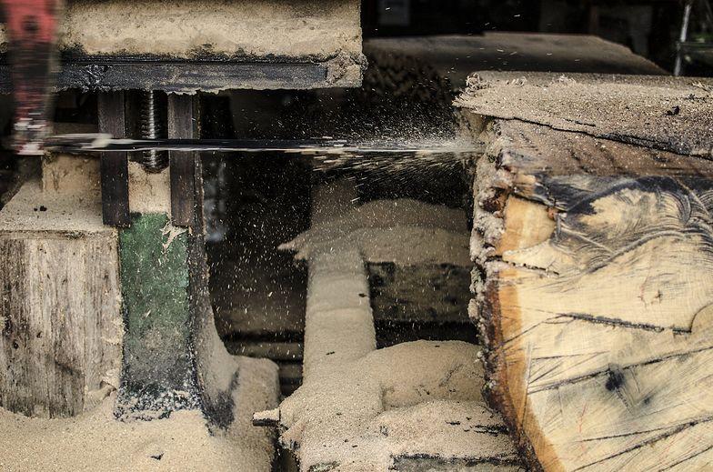 """""""Obecnie Ikea wykorzystuje mniej niż 1 proc. całkowitego drewna pozyskanego na Ukrainie"""" - odpowiada nam sieć.."""