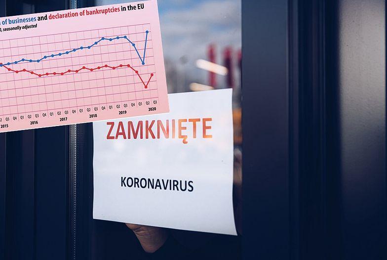 Rejestracje i upadłości firm. Polska na tle UE