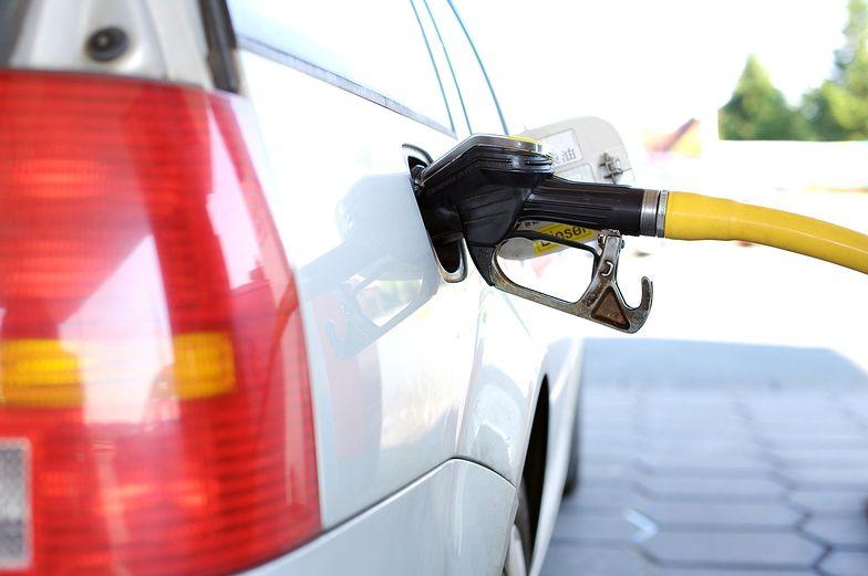 Ceny ropy lekko w dół. Ale na razie tankowanie będzie droższe.