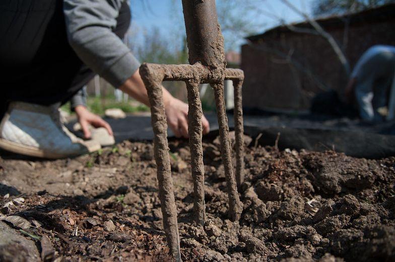Przez 15 lat ubyło prawie 600 ogrodów działkowych