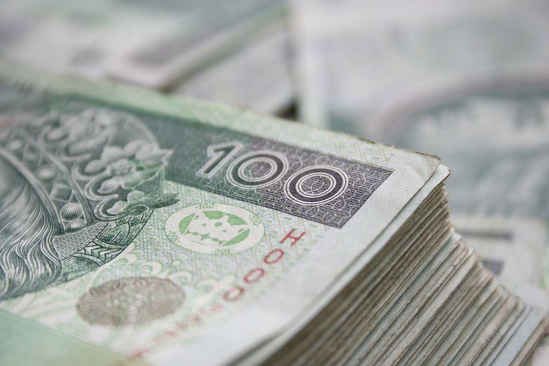 Kursy walut. Odczyt PMI może osłabić złotego.
