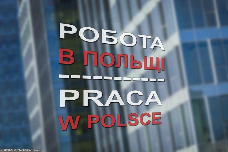 Cudzoziemcy skorzystają na Polskim Ładzie. Zapłacą niższy PIT niż Polacy