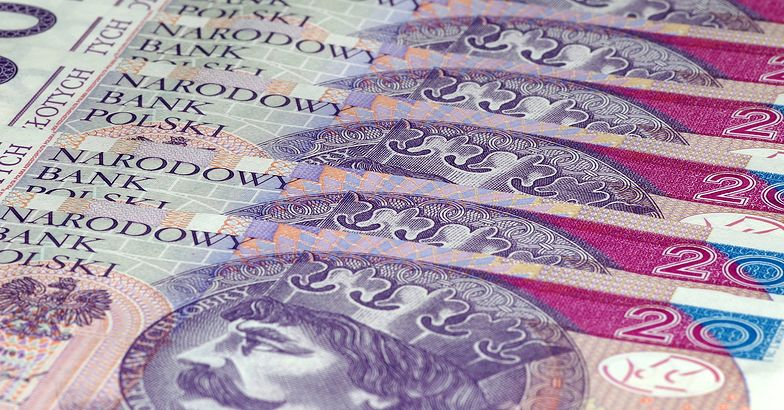 Kursy walut. Dane GUS o sprzedaży detalicznej pomogły złotemu.