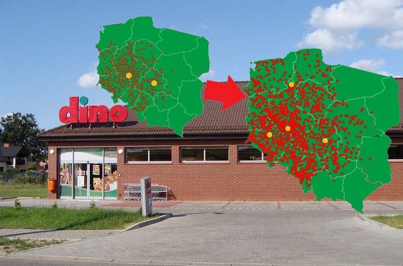 Sieć Dino z każdym rokiem liczy coraz więcej sklepów.
