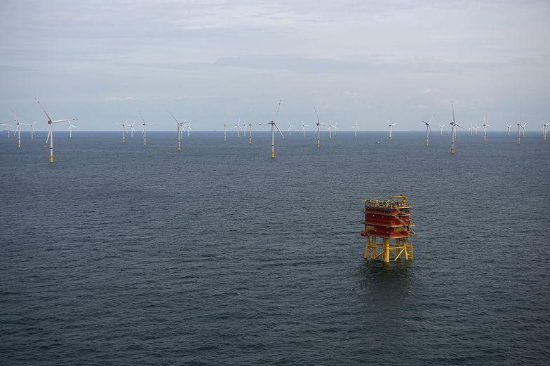Duńczycy budują sztuczną wyspę dla wiatraków. Tymczasem Polska rozważa powrót wiatraków na ląd