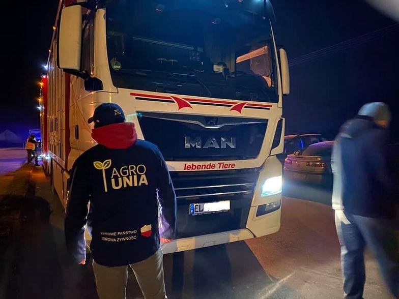 Awantura pod zakładem mięsnym w Mościszkach. Rolnicy blokują transport świń z Niemiec