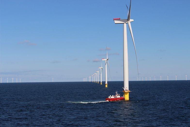 Tauron ma umowę z zagraniczną spółką. Chcą budować farmy wiatrowe na Bałtyku